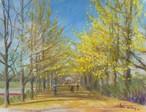 NO.35「銀杏並木の散歩・11月」