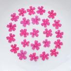 真空パック【30枚】バーベナの押し花 ライトピンク