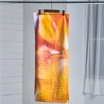 【6月24日発売】Towel / Classic 2020 (Pink)