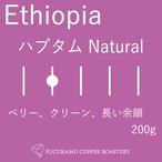 エチオピア ハブタム ナチュラル【ハイロースト】200g