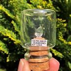 ハーキマーダイアモンドクリスタル アメリカ合衆国ニューヨーク産 宝石の森シリーズ ガラスボトルジュエリー bs089