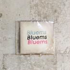 Bluems / 「ペーパータウン / 恋人たち」