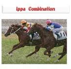 Ippa Combination(特別先行価格 ~10/30)