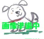 【新開発】オリジナルブレンドケルプパウダー50g