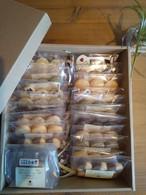 手作りクッキー詰め合わせセット/クッキー/全13種21袋/送料無料!!/自然素材