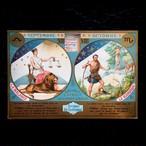天秤座と蠍座のカード