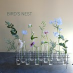 BIRD'S NEST L GRASS TEST TUBE VASE