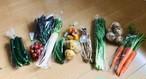 土曜日発送のお野菜おまかせセット。前日金曜日15時 締切(お野菜は季節により変わります)