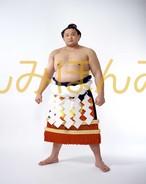 平成9年3月場所優勝 横綱 貴乃花光司関(16回目の優勝)