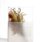 OUTLINE / swag type - S