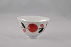 ボタニカル 茶碗 赤