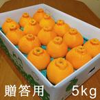送料無料 天デコ 不知火 肥の豊 (デコポン)贈答用5kg 3L〜2L 熊本県産 冬のギフト