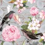 入荷しました|2020春夏【Paper+Design】バラ売り2枚 ランチサイズ ペーパーナプキン BIRDS OF A FEATHER グレー