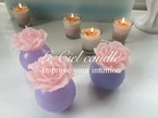 peony pink candle