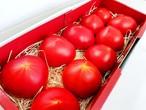【野菜ソムリエザミット食味部門大賞受賞】 金筋トマト