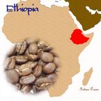 エチオピア・イルガチャフG-2  200g