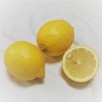 【国産】レモン(5kg)無農薬栽培