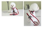 特許をもつBonydog製の優しい設計のハーネス  レッド