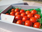 フルーツトマト秀品 化粧箱入1kg