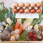 【自然栽培、農薬&化学肥料不使用】特選野菜セット+ほんまの卵  [送料無料]