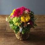 【5/12以降のお届けとなります】Mother's Day 季節の花カゴM(カゴが変更になりました)