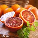 福岡県能古島産:芳醇な香りとジュシーな果汁が溢れる「ブラッドオレンジ」約5K *2月下旬からお届け