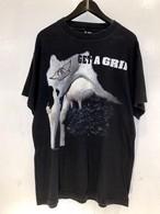 AERO SMITH バンドTシャツ