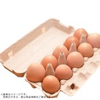 平飼い卵(10個入)