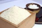 【新米】特別栽培米コシヒカリ白米5㎏