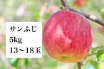 サンふじA品 約5㎏(13~18玉入り)