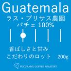 グァテマラ ラス ブリサス農園(パチェ100%)【ハイロースト】200g