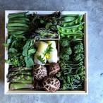 [期間限定]京の山菜重/木箱と出汁重 二段重(2月下旬~5月初旬)
