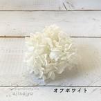 全8色|【 OH! ひめあじさい 】プリザーブドフラワー 紫陽花・アジサイ
