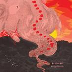 【LP】Rejoicer - Energy Dreams