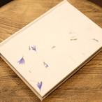 罫線 コーンフラワー手漉き紙 A6Colorisノート ポータブルサイズ