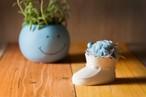【花のプレゼント・出産祝い】プリザーブドフラワー(ベビーシューズ) ブルー