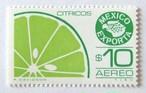 エクスポルタ・シトラス / メキシコ 1981