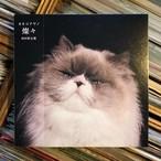 カネコアヤノ / 燦々 [初回限定盤 CD+DVD 新品]