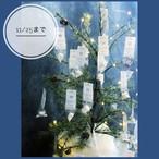 食べられるオーナメント【アドベントカレンダー2019】