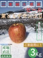 青森県津軽産りんご「葉とらずサンふじ」【規格外】ご家庭用3Kg/箱【送料無料】