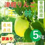 青森県津軽産りんご【王林】訳あり5Kg/箱【送料無料】