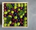 [期間限定]四季の果実箱/木箱