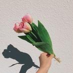 mini bouquet/チューリップ