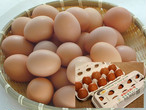 平飼い卵 30個 (10個入り箱×3)