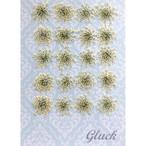 コンパクト押し花 レースフラワー(ホワイト大) 少量をパックにしてお届け! 押し花素材