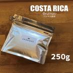 コスタリカ ブルマス農園 250g
