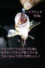 ドブヘッド6.5g・4.5g(ジグヘッド)