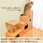 段ボール キャットタワー 多頭飼い、大型猫にもおすすめ