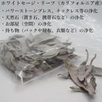 【ホワイトセージ・リーフ 15g カリフォルニア産】B002