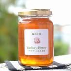 沖縄の蜂蜜・森の花蜜 (アサグラ・にがあま蜜)200g [送料無料]